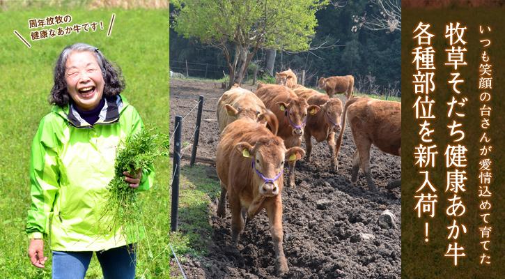 菊池農場のあか牛を入荷!