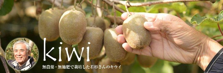 若杉さんの自然栽培キウイ