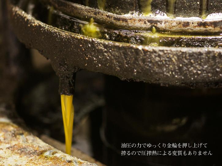 搾られたばかりの新鮮な油