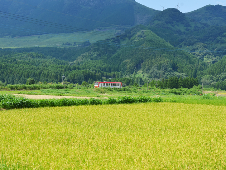圃場周りの南阿蘇の風景