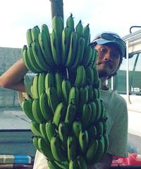 フナミズさんとバナナ