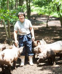武藤さんと豚たちは仲良し