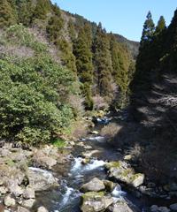 湧水が川になる