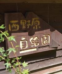 にしばる園の看板