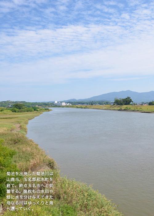 玉名を流れる菊池川の写真