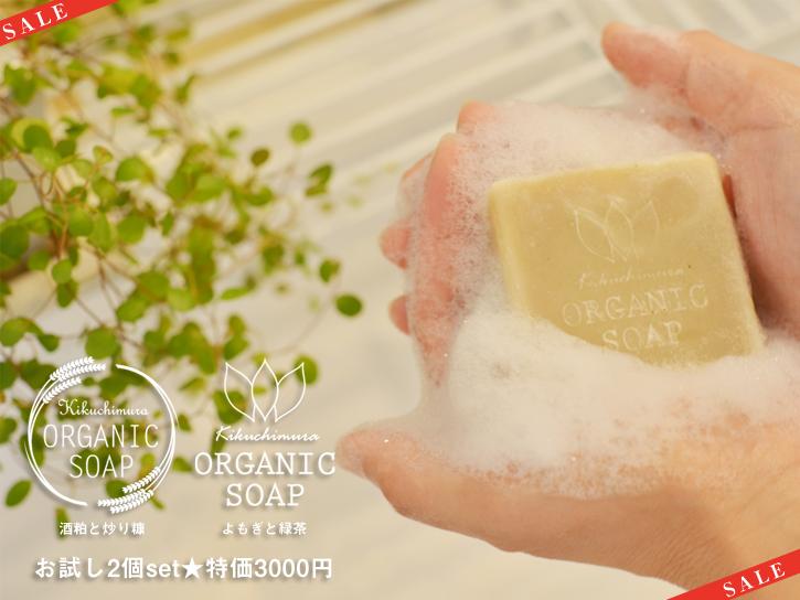 特価★石鹸で手を洗う