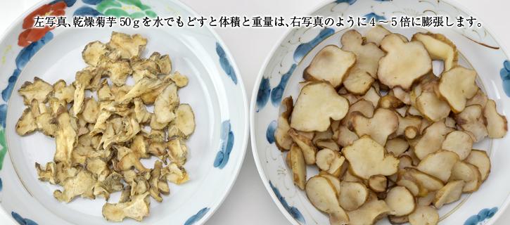 菊芋を戻すと4〜5倍に増えます