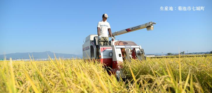 「冨田自然米の」生産地の菊池市七城町の写真
