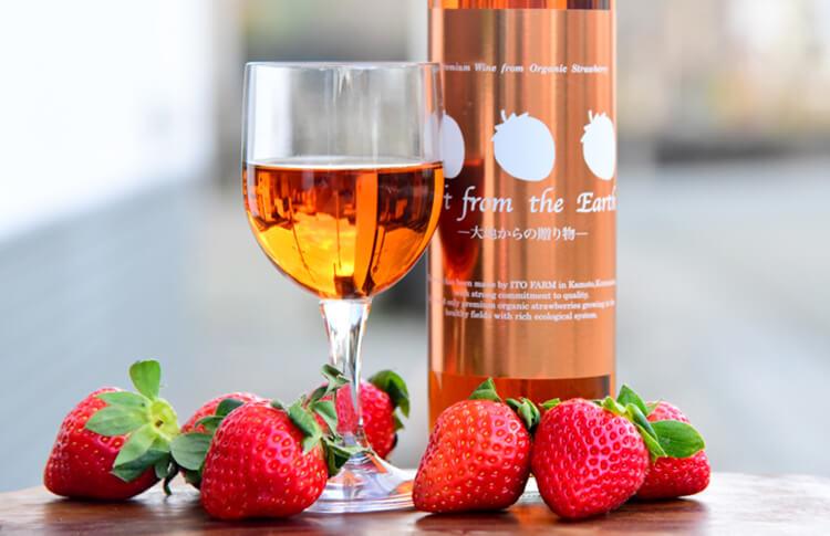 いちごのワイン 〜大地からの贈り物〜 500ml