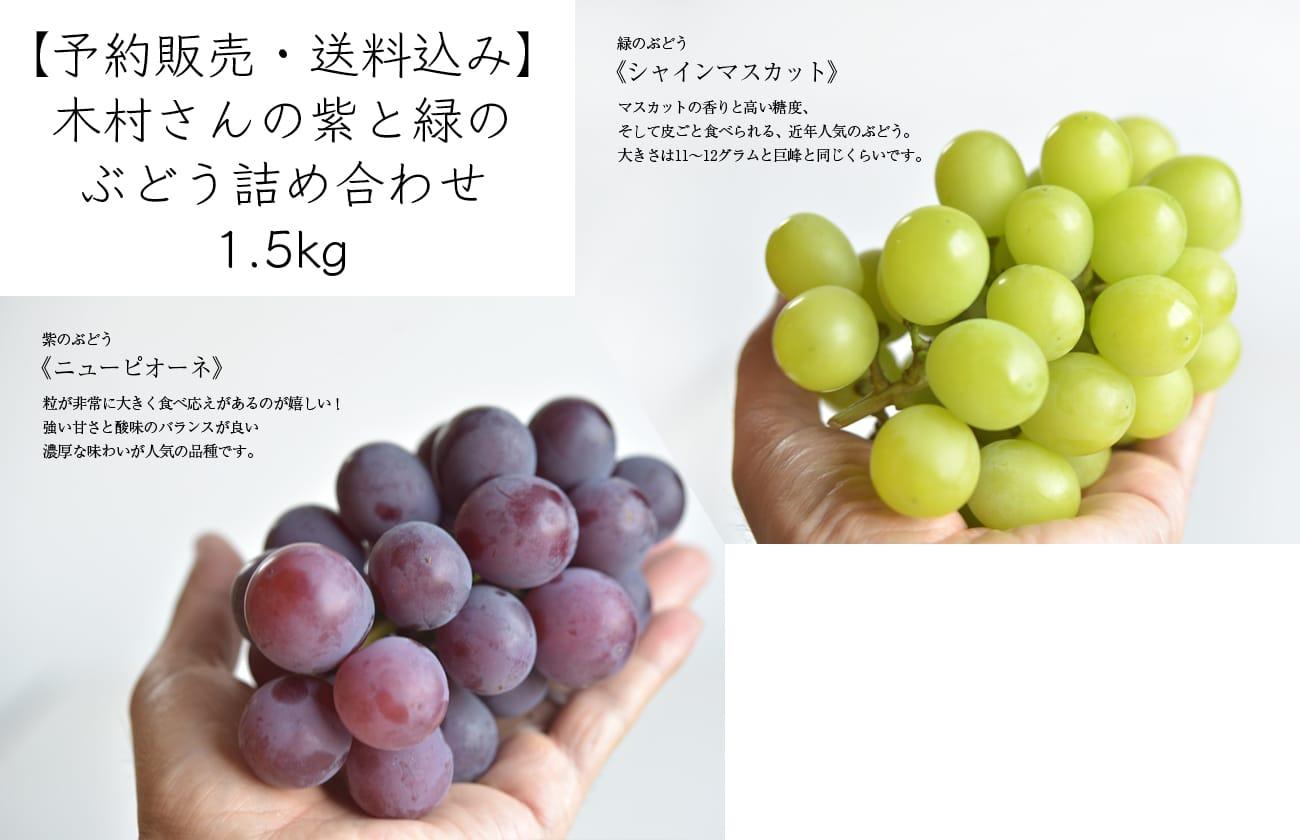 木村さんの紫と緑のぶどう