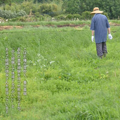菊池養生園伝承館