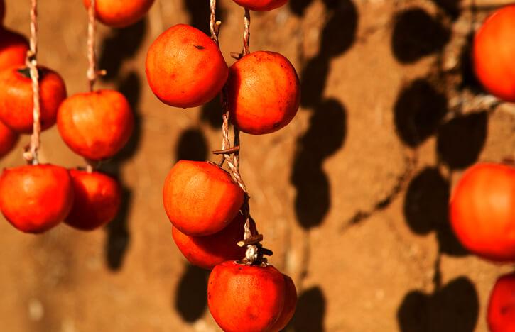 高木さんのあんぽ柿が並ぶ風景