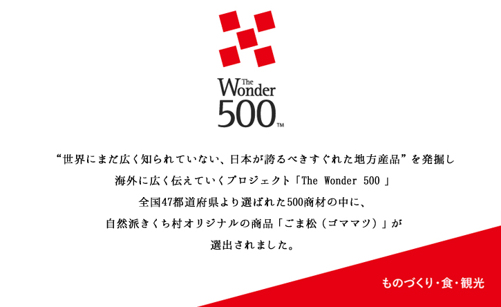 the wonder 500選出の説明