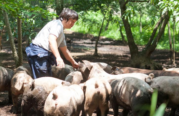「走る豚」と戯れる武藤さん