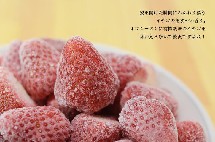 伊藤冷凍いちご