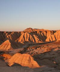 自然な栽培を育む砂漠の気候