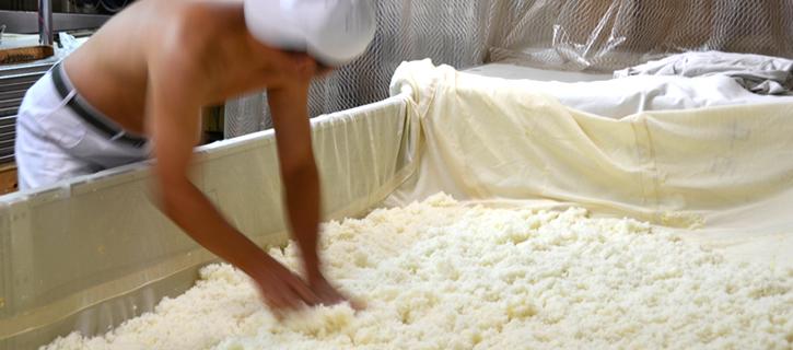 麹を作る蔵人