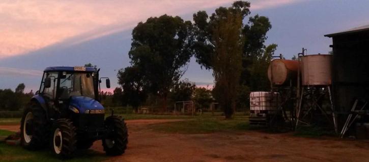 rosneyの圃場の夕暮れ